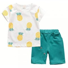 HZXVic Toddler Baby Boy Girl Summer Clothes Infant Pineapple Shirt & Shorts Outfits